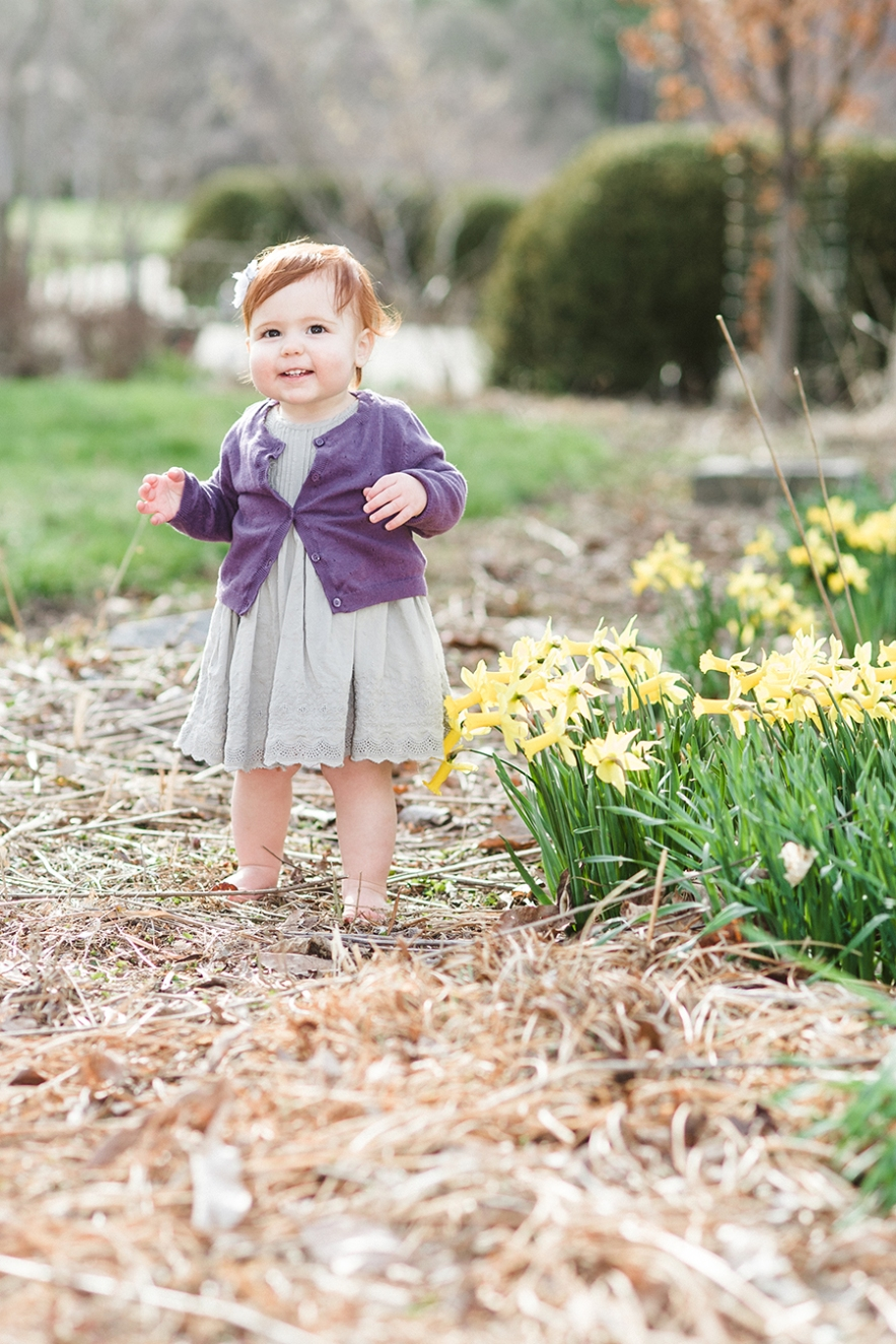 redheaded baby walking in daffodils