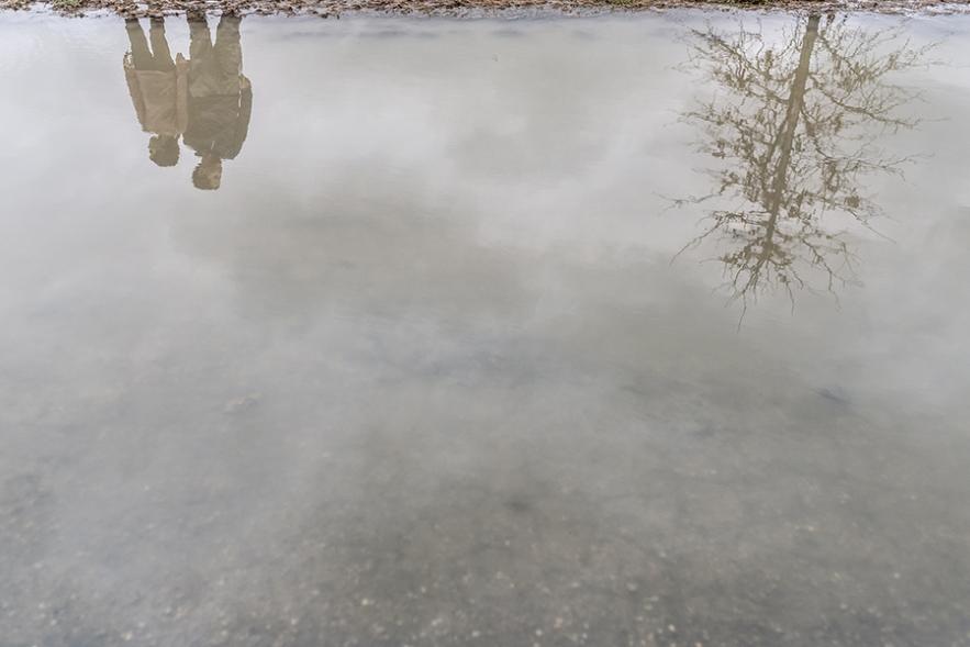 2020_3_16_puddle_reflection-5005